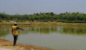 Foto : bhirawa.co.id
